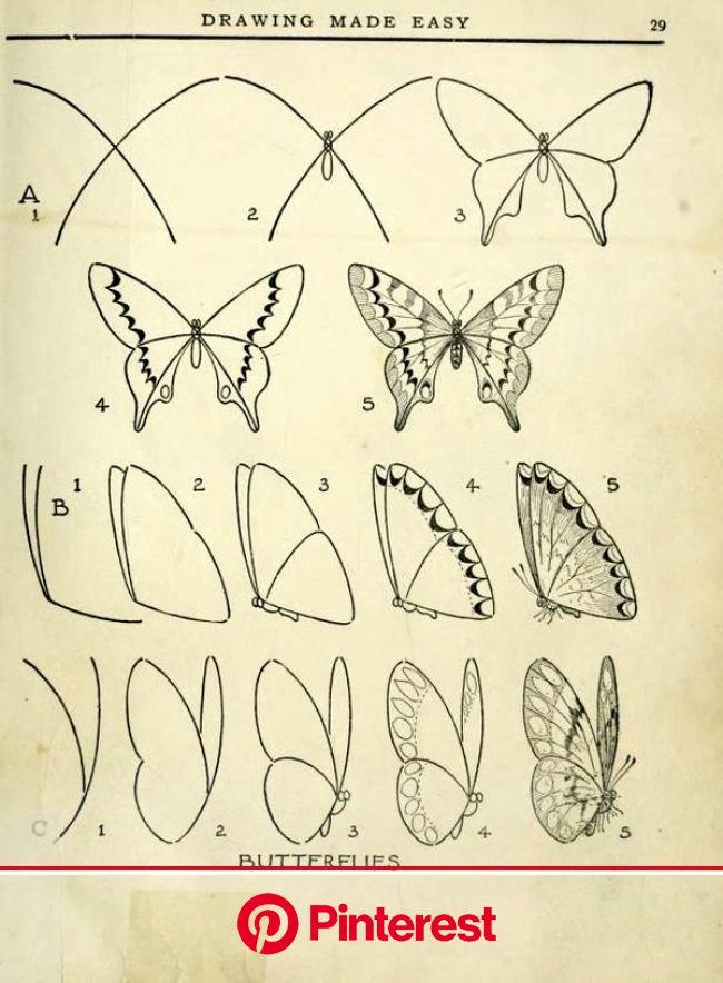 Последние образцы татуировки предплечье для мужчин и женщин (30) | Butterfly drawing, Art drawings simple, Drawings