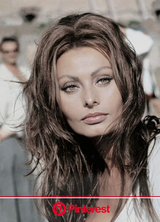 """Distracted Film on Twitter: """"THE FACE OF ANOTHER: Sophia Loren.… """" 