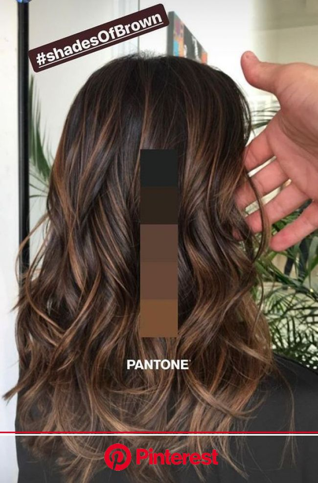welcome | Brown hair balayage, Hair styles, Brunette hair color