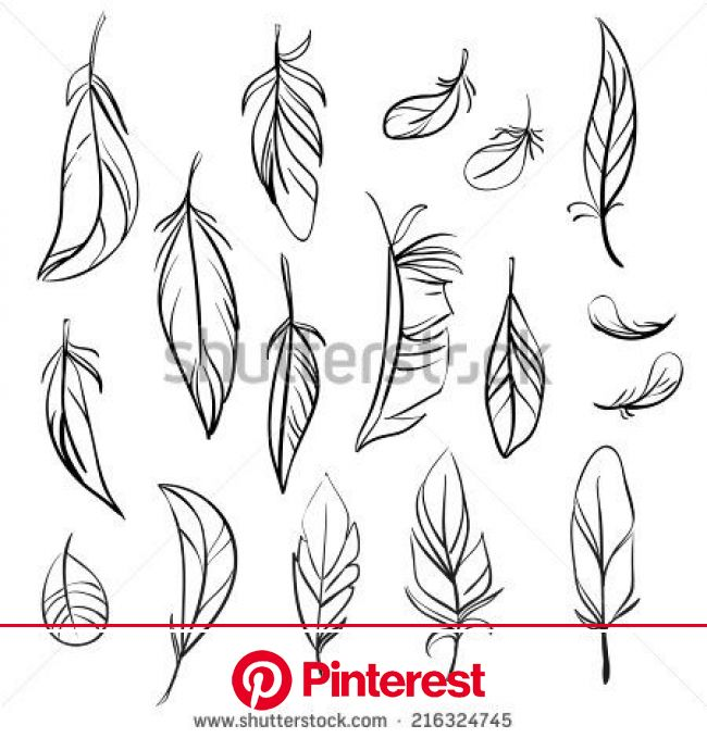 swirls - Google Search | Feather drawing, Feather art, Feather tattoo design