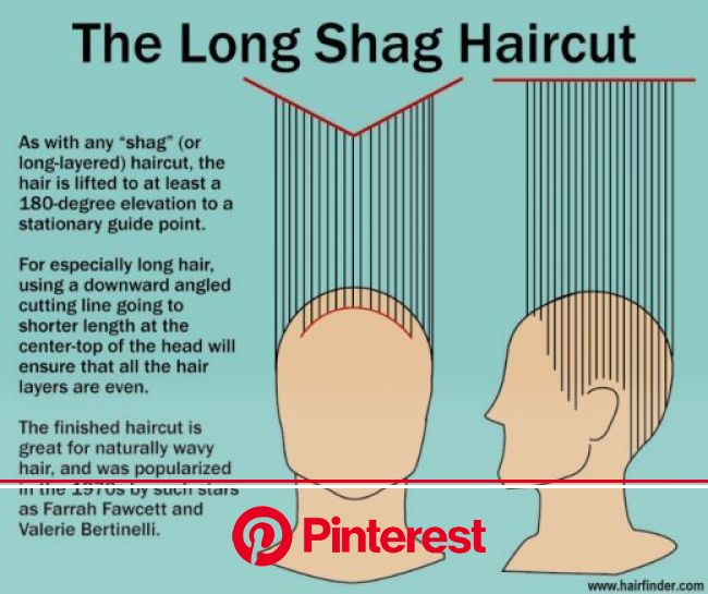 Shaggalicious, Baby - Shag Hairstyle of the Stars | Long layered curly hair, Shag haircut, Long shag haircut
