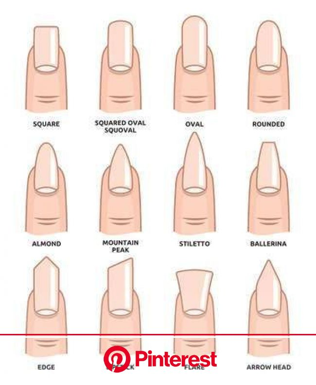 Different nail shapes - Fingernails fashion Trends | Acrylic nail shapes, Nail shapes, Different nail shapes